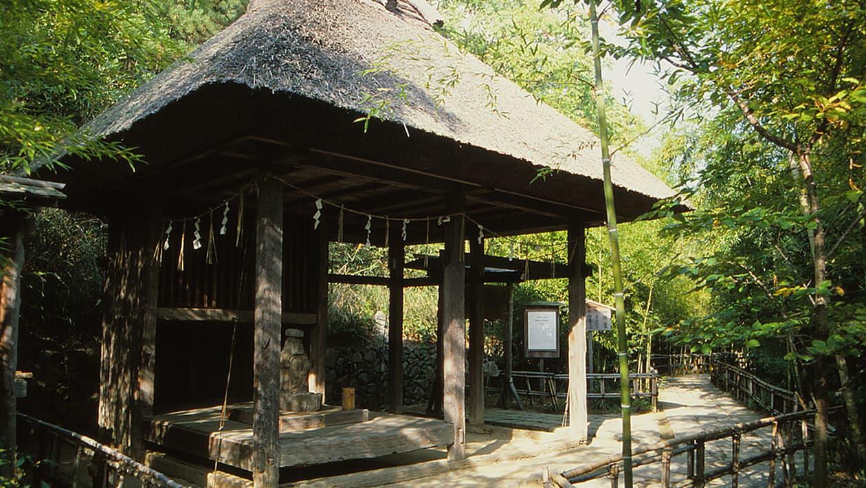 시코쿠 무라